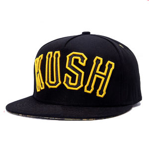 Custom Snapback Baseball Hat Embroidery pictures & photos