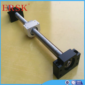Performance Design Ball Screw with Double Nut and Brackets pictures & photos
