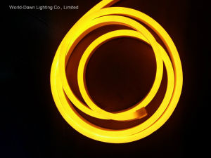 Ce EMC LVD RoHS Two Years Warranty, New Square LED Neon Rope (WD220-SQ2W-2835-120L-NFL) pictures & photos