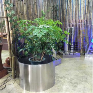 Customized Design of Decorative out Door/Hotal Stainless Steel Flower Pot pictures & photos