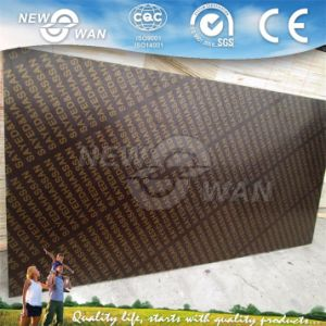 18mm Phenolic Film Faced Plywood Prices/ Shuttering Plywood for Concret Formwork pictures & photos