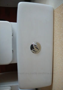 Watermark Approval Two Piece Toilet pictures & photos