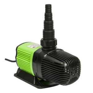 Amphibious Eco Water Pump (HL-ECO8000) pictures & photos