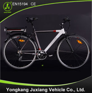 Good Quality and Fashion Electric Bike Tde59z pictures & photos