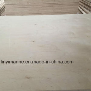 White Birch Plywood Cp/Cp Grade for Furniture pictures & photos