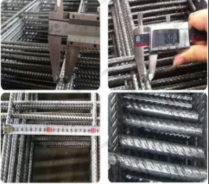 Building Ribbed Bar Reinforcing Mesh/Concrete Reinforcement Mesh pictures & photos