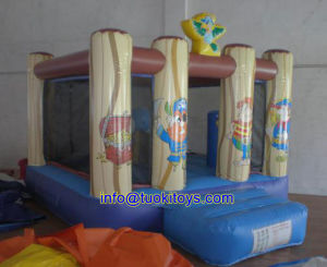 Less Maintenance Inflatable Moon Bounce for Amusenment Park (A008)