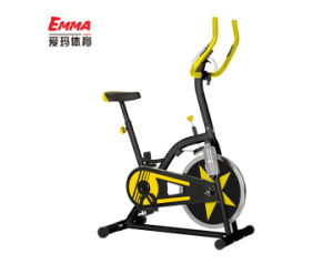 Home Use Fitness Spin Bike (S9000YB) pictures & photos