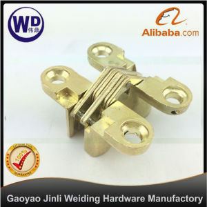 Door Concealed Invisible Cross Hinge Xh-003 Zinc Alloy Gold pictures & photos