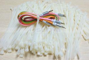 25PCS Per Bag Universal Heat Resistance Self Locking Reusable Nylon Cable Tie pictures & photos