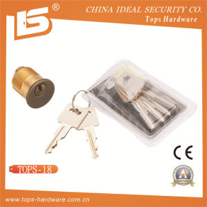 High Quality Brass Door American Cylinder (TOPS-18) pictures & photos