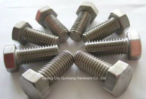 Heavy Hex Bolts (M12-M36 Cl. 4.8/6.8/8.8/10.9 ASME B18.2.3.6m) pictures & photos