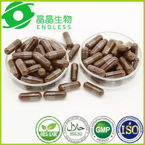 Enhance Immunity Reishi Spore Powder Capsule pictures & photos
