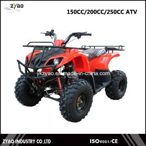 150cc Farm ATV 2016 Hot Sale CVT Popular ATV, 2000cc Automatic Quad, Quad Bike ATV Good Sale pictures & photos