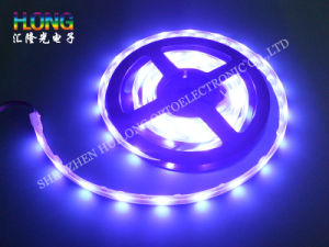 Multicolor High Flexibility LED Strip Light 14.4W SMD5050 pictures & photos