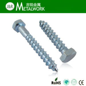 Galvanized Hex Head Self Tapping Lag Screw (DIN571) pictures & photos
