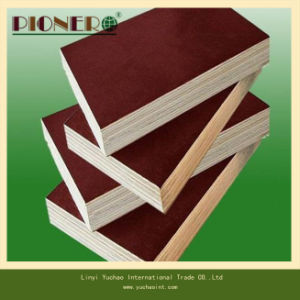Good Price Faced Plywood for Construction pictures & photos