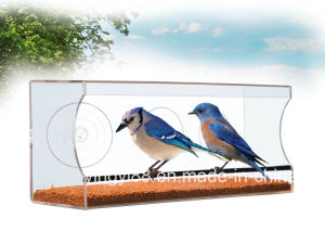 Wholesale Large & Clear Window Bird Feeder - for Birds Lovers! Lovely Gift to Get Closer to Nature pictures & photos