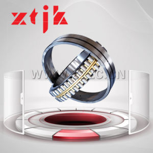 Double Row Cylindrical Roller Bearing Made in China