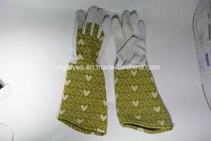 Long Cuff Garden Glove-Full Leather Garden Glove-Pig Leather Glove pictures & photos