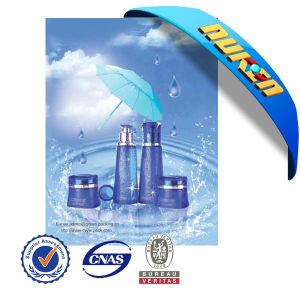 High Quality 3D Lenticular Discount Poster Printing pictures & photos