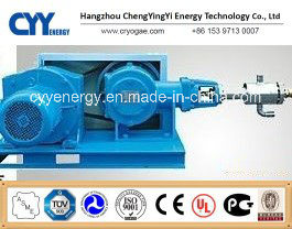 Cyyp 77 Uninterrupted Service Large Flow and High Pressure LNG Liquid Oxygen Nitrogen Argon Multiseriate Piston Pump pictures & photos