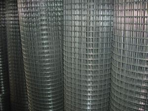 Welded Wire Mesh Panel / Welded Panel Mesh / Galvanized Welded Wire Mesh From Anping Yaqi Factory pictures & photos