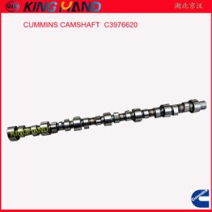 C3976620 Cummins Camshaft