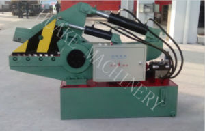 Hydraulic Metal Shearing Machine pictures & photos
