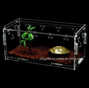 2018 New Design Acrylic Reptile Display Case pictures & photos