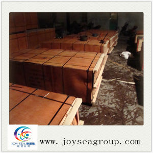 Anti-Slip Shuttering Brown Poplar Film Faced Plywood pictures & photos