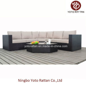 Hot! New Style Rattan Sofa Set (1103) pictures & photos