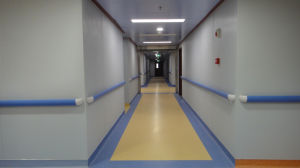 Handrail Acrovyn Wall Protection for Hospital pictures & photos