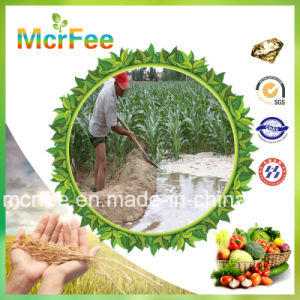 Mcrfee NPK 18-18-18 +Te Fertilizer Fully Soluble pictures & photos
