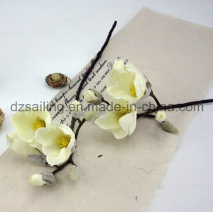 Artificial Magnolia Flower with Hand Feeling Coating for Wedding /Home Decor (SF15336)