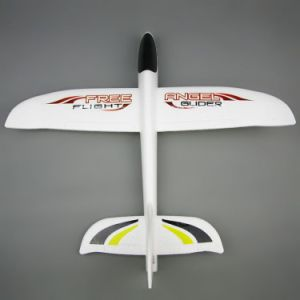 702702-RC Fixed-Wing Aeroplane pictures & photos