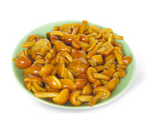 Mushroom Canned Nameko Mushroom with Best Price pictures & photos