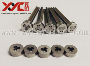 High Precision Tungsten Carbide Punches pictures & photos