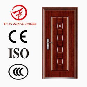 Security Door for Modern Design pictures & photos