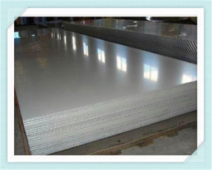 Stainless Steel Sheet (304, 316L, 321, 310S, 430)