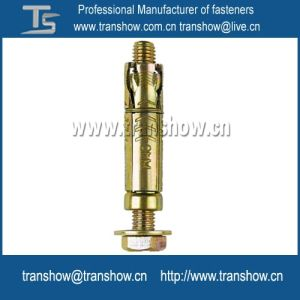 Steel Zinc-Plated Wedge Expansion Anchor M6-M16 Anchor pictures & photos