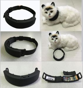 2017 New Hot Selling Pet GPS Tracking Device with Geo-Fencing D62 pictures & photos