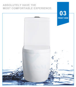 Weidansi Ceramic Wash Down S-Trap One Piece Toilet (WDS-T6105) pictures & photos