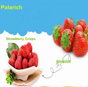 Freeze Dried Strawberry Crisp/ Leisure Food/Fruit Snacks