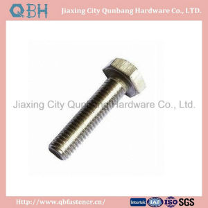 Hex Bolts (ASME B18.2.1) pictures & photos