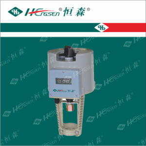Df/Q-Xe/Xg Valves Actuators / HVAC Controls Products pictures & photos
