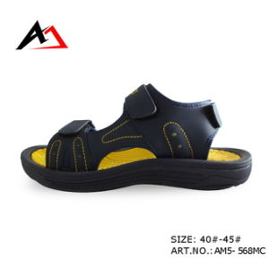 Sandal Shoes High Quality Leisure Footwear for Men (AM5- 568MC) pictures & photos