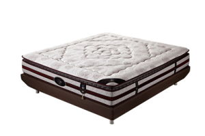 The Pocket Spring Mattress for Bedroom (Charm SPA) pictures & photos