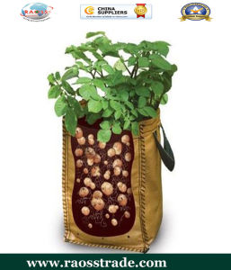 Heavy Duty Home Potato Growning Bag pictures & photos
