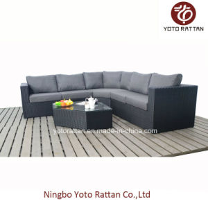 Black Rattan Sofa Set for Outdoor (1303) pictures & photos